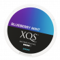 XQS Blueberry Mint Strong